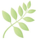 Funzioni Eco-friendly